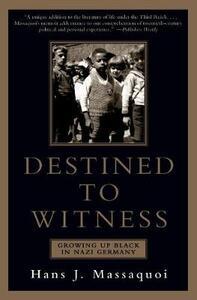 Destined to Witness - Massaqudi - cover