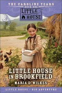 Little House in Brookfield - Maria D Wilkes - cover