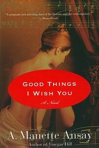 Good Things I Wish You - A Manette Ansay - cover