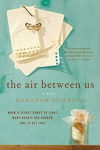 The Air Between Us - Deborah Johnson - cover