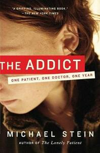 The Addict: One Patient, One Doctor, One Year - Michael Stein - cover