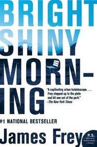 Bright Shiny Morning - James Frey - cover