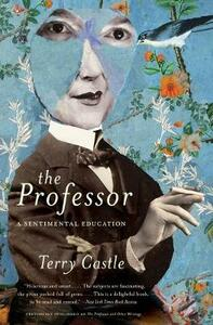 The Professor: A Sentimental Education - Terry Castle - cover