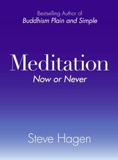 Meditation Now or Never