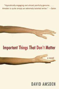 Foto Cover di Important Things That Don't Matter, Ebook inglese di David Amsden, edito da HarperCollins
