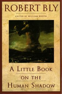 Foto Cover di A Little Book on the Human Shadow, Ebook inglese di Robert Bly, edito da HarperCollins