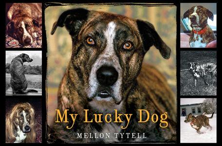 Foto Cover di My Lucky Dog, Ebook inglese di Mellon Tytell, edito da HarperCollins