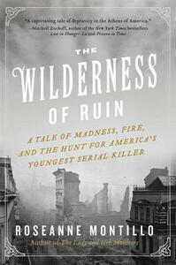The Wilderness of Ruin: A Tale of Madness, Fire, and the Hunt for America's Youngest Serial Killer - Roseanne Montillo - cover