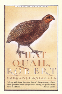 Ebook in inglese That Quail, Robert Stanger, Margaret