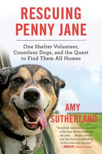 Ebook in inglese Rescuing Penny Jane Sutherland, Amy