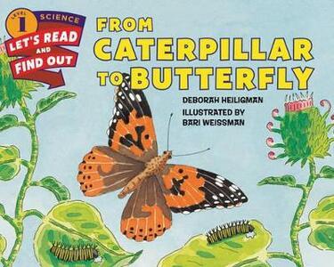 From Caterpillar To Butterfly - Deborah Heiligman - cover