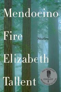 Mendocino Fire: Stories - Elizabeth Tallent - cover