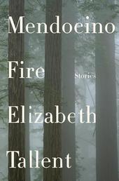 Mendocino Fire