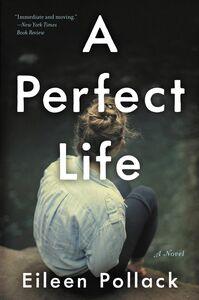 Foto Cover di A Perfect Life, Ebook inglese di Eileen Pollack, edito da HarperCollins