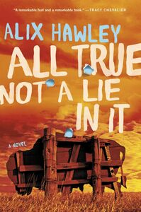 Foto Cover di All True Not a Lie in It, Ebook inglese di Alix Hawley, edito da HarperCollins