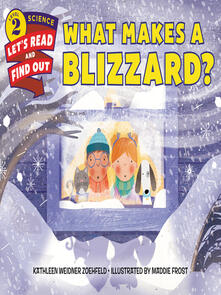 What Makes a Blizzard?