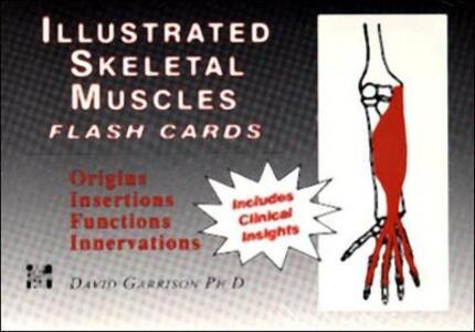 Illustrated Skeletal Muscle Flash Cards - David Garrison - cover