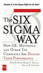 Six Sigma Way, Chapter 6