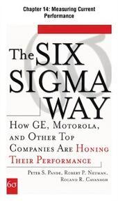 Six Sigma Way, Chapter 14