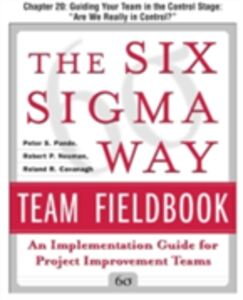 Foto Cover di Six Sigma Way Team Fieldbook, Chapter 20, Ebook inglese di AA.VV edito da McGraw-Hill