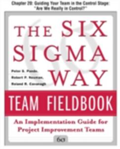 Ebook in inglese Six Sigma Way Team Fieldbook, Chapter 20 Cavanagh, Roland , Neuman, Robert , Pande, Peter