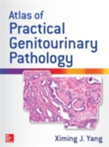 Ebook in inglese Atlas of Practical Genitourinary Pathology Yang, Ximing