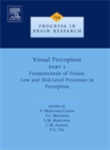 Ebook in inglese Visual Perception Part 1