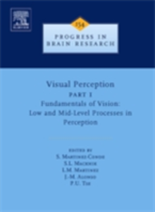 Ebook in inglese Visual Perception Part 1 -, -