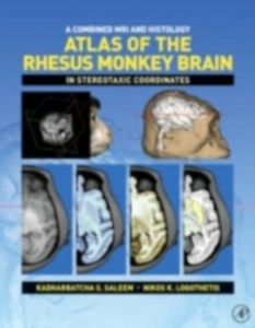 Ebook in inglese Combined MRI and Histology Atlas of the Rhesus Monkey Brain in Stereotaxic Coordinates Logothetis, Nikos K. , Saleem, Kadharbatcha S.