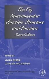 Fly Neuromuscular Junction: Structure and Function