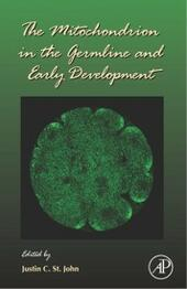 Mitochondrion in the Germline and Early Development