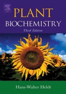 Foto Cover di Plant Biochemistry, Ebook inglese di Hans-Walter Heldt,Birgit Piechulla, edito da Elsevier Science