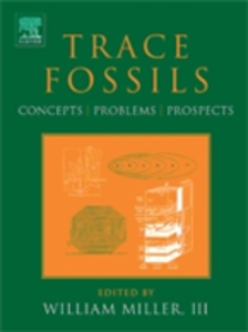 Ebook in inglese Trace Fossils -, -