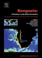 Benguela: Predicting a Large Marine Ecosystem