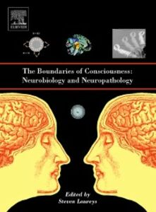 Ebook in inglese Boundaries of Consciousness: Neurobiology and Neuropathology -, -