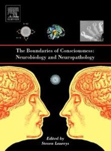 Foto Cover di Boundaries of Consciousness: Neurobiology and Neuropathology, Ebook inglese di  edito da Elsevier Science
