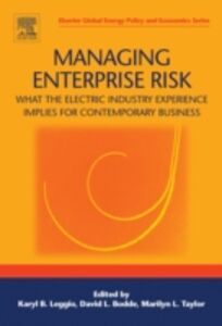 Ebook in inglese Managing Enterprise Risk: What the Electric Industry Experience Implies for Contemporary Business