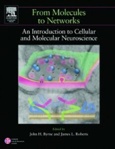 Ebook in inglese From Molecules to Networks -, -