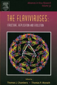 Ebook in inglese Flaviviruses: Structure, Replication and Evolution -, -