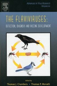 Ebook in inglese Flaviviruses: Detection, Diagnosis and Vaccine Development