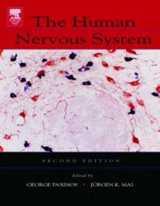 Ebook in inglese Human Nervous System Mai, Juergen K. , Paxinos, George
