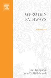 G Protein Pathways, Part B: G Proteins and Their Regulators