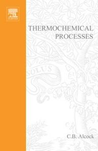 Ebook in inglese Thermochemical Processes: Principles and Models Alcock, C. B.