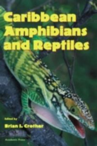 Ebook in inglese Caribbean Amphibians and Reptiles -, -