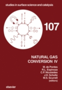 Ebook in inglese Natural Gas Conversion IV -, -