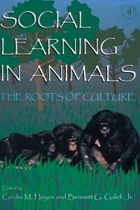 Ebook in inglese Social Learning In Animals