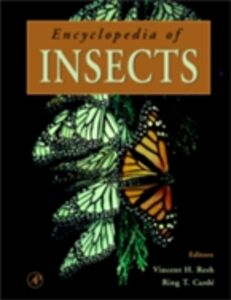 Foto Cover di Encyclopedia of Insects, Ebook inglese di  edito da Elsevier Science