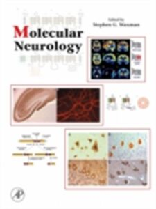 Foto Cover di Molecular Neurology, Ebook inglese di Stephen Waxman, edito da Elsevier Science