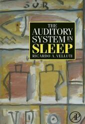 Auditory System in Sleep