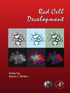 Ebook in inglese Red Cell Development -, -